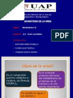 Expo de Bioquimica Sintesis de La Urea