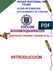 Semana 13- Ciclo Biogeoquimicos