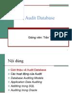 c06_auditdatabase_131115