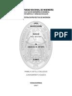 Trabajo de Macro - PBI - Maestria Uni