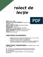 21proiectmate.doc
