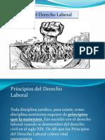 Principios Del Derecho Laboral PDF 5