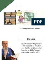 Derecho Laboral Unico y Definitivo......[1] PDF