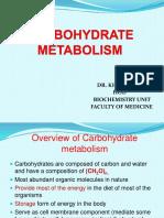 11 - Carbohydrate Metabolism (1)