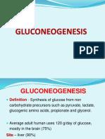13 - Gluconeogenesis