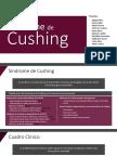 Diapositivas Sx de Cushing