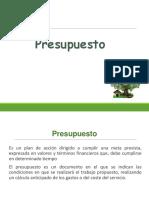Presupuesto-ppt.ppt