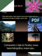 Maquete Ambiental do Vale do Paraíba - Parte 1 - Caracterização VALE DO PARAÍBA