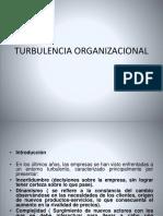 Turbulencia Organizacional Maestria