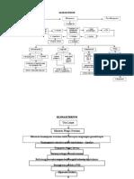 Klimakterium Pathway
