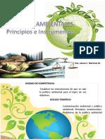 Las Políticas Ambientales. Principios e Instrumentos. Iraima V. Martínez M.