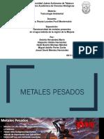 Exposición 2. Metales Pesados