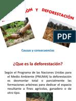 deforestacinyreforestacin-170428134958