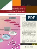4 Los Procesos de Formacion y Desarrollo de Investigadores en La Universidad de Guadalajara