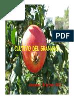 Cultivo Granado
