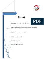 Informe Técnico Puentes Darwinpalma