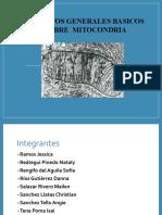 Biogénesis y Patología Mitocondrial (2)