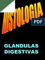 glandulas digestivas h