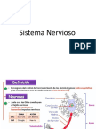 Presentacion Sistema Nervioso