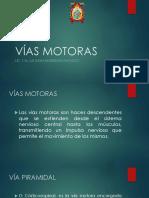 VÍAS MOTORAS