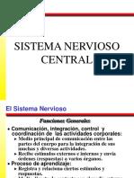 Sistema Nervioso Revisión