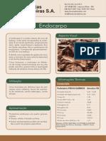 Endocarpo.pdf