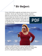 Ali Şimşek - Tuhaf bir beyeni Camp Susan Sontag