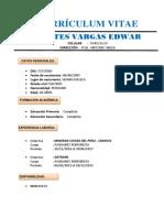 Curriculo Vtae.docx 2015