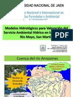Modelos hidrológicos para la valoración del servicio ambiental hídrico en la cuenca del río Mayo, San Martín - PERU.