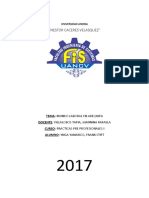 Mundo Laboral en Arequipa (Practicas Professionales I)