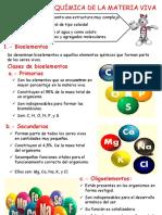 Bio Moléculas (1)