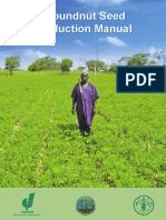 Groundnut Seed Production Manual Groundnut Seed ... - Icrisat