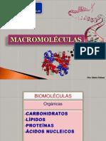 BIOLOGÍA CELULAR Macromoleculas