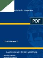 Tejidos Animales y Vegetales (1)