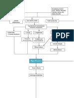 Pathophysiology Hypertension