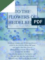 To the Flowers of Heidelberg