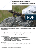 quantifyinglizardmemory pptx