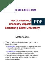 151 Metabolism