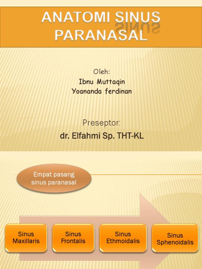 Anatomi Sinus Paranasal