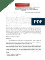 CONSTRUINDO A HISTÓRIA DOS POVOS INDÍGENAS  NO NORTE E NOROESTE FLUMINENSE ATRAVÉS DO OLHAR DOS VIAJANTES.pdf
