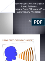 New Perspectives on English Sound Patterns