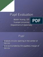 Pupil Evaluation