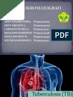 Immunokromatografi