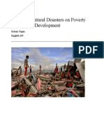 natural disaster research paper