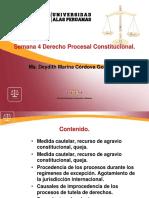 Ayuda 4 Der Proc Constituc