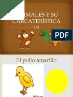 Animales y Su Carcaterística