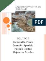 Expo Teoria Quimiosintetica de Oparin y Haldane2