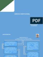 Tema 1 PROCESAL CONSTITUCIONAL.pptx
