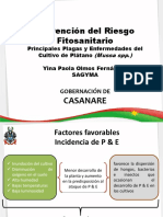 platanio22.pdf
