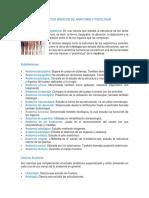 Conceptos Básicos de Anatomia y Fisiologia